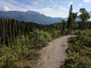 Rock Creek Trail, Denali National Park