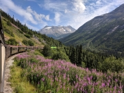 White Pass - Yukon Railroad