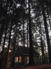 Los Gatos Airbnb Cabin