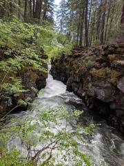 Rouge River Gorge, Oregon