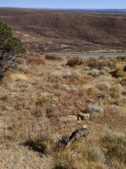 Mesa Verde Far View Lodge View