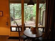 Yosemite Falls Cabin View
