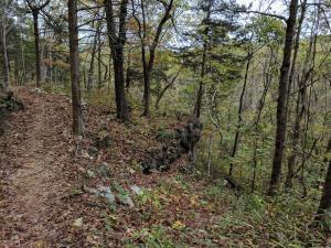 Painter Ridge Trail